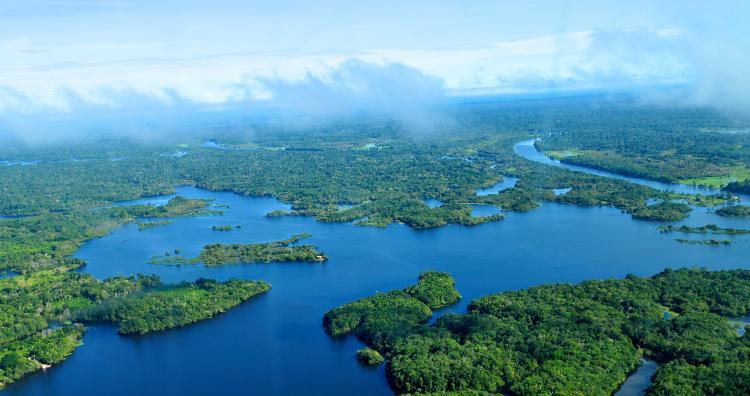 Espectro Livre, Transparência e Vigilância: por uma apropriação dos meios digitais na Amazônia